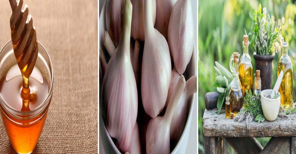 علاج تليف الرحم بالأعشاب