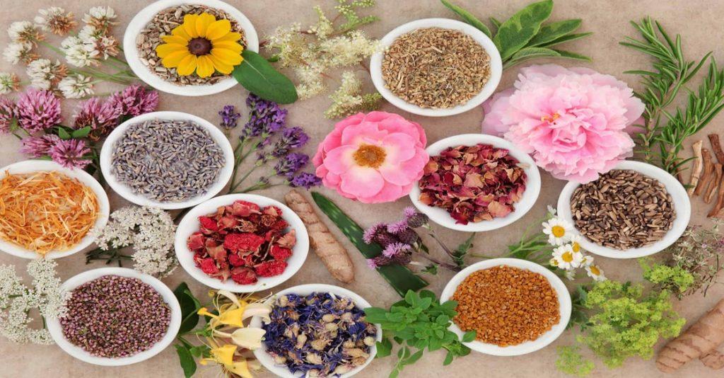 علاج القولون العصبي بالأعشاب