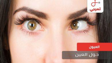 Photo of حول العين الأسباب الأنواع وطرق العلاج