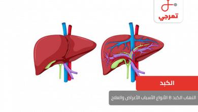 Photo of التهاب الكبد B الأنواع الأسباب الأعراض وطرق العلاج