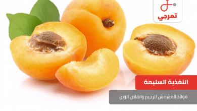 Photo of فوائد المشمش للرجيم وانقاص الوزن
